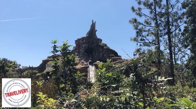 Secret Path at Disneyland
